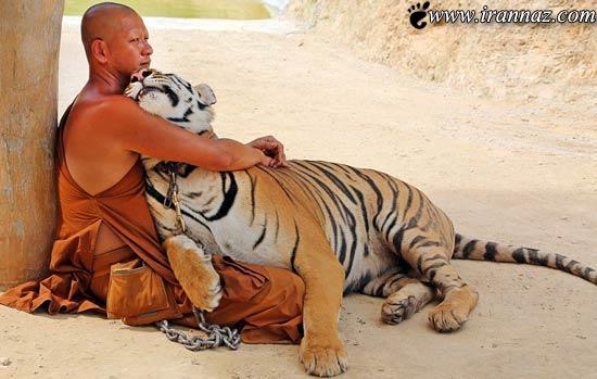 عکس های زندگی عجیب و ترسناک راهبه های بودایی!