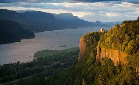 برگترن رودخانه ای جهان(عکس)