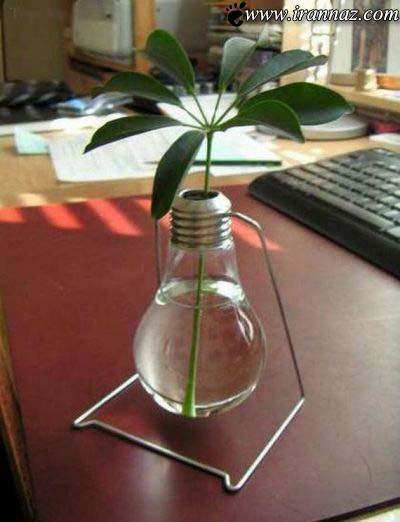 عکسهایی دیدنی از خلاقیت در استفاده از حباب لامپ