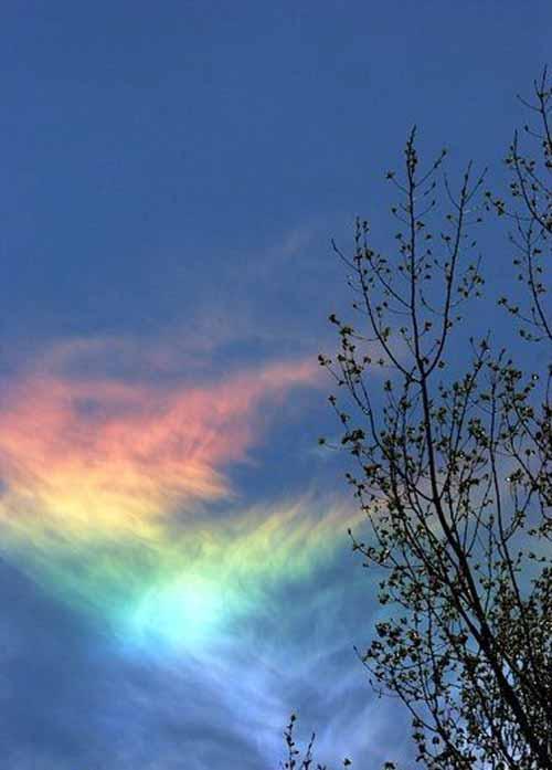 عکس های زیبا و شگفت انگیز از یک رنگین کمان کمیاب