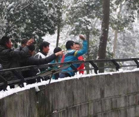 حرکت ناشایست زن و مرد چینی در باغ وحش (عکس)
