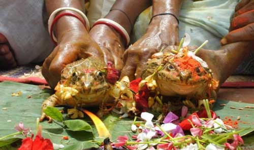 یک عروسی بسیار عجیب و دیدنی در هند (عکس)