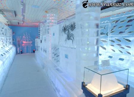 ساخت جالب ترین آکواریوم دنیا در کشور ژاپن (عکس)