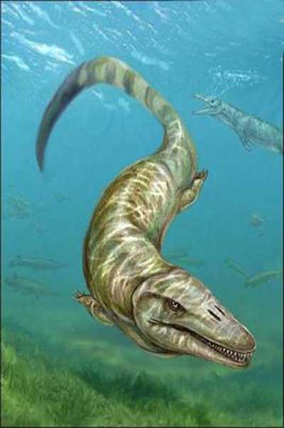 پیدا شدن یک فسیل هیولا در مجارستان (عکس)