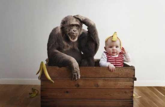 اشنایی با هنرمند ترین فرد خانواده (عکس)