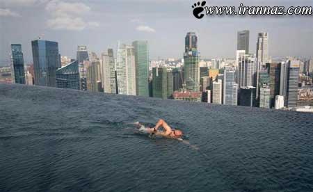 عمرآ اگه جرآت داشته باشی توی این استخر شنا کنی