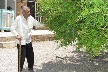 تصاویری از پیرترین پدر بزرگ ایرانی (عکس)