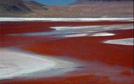 دریاچه های پر جازبه و عجیب (عکس)