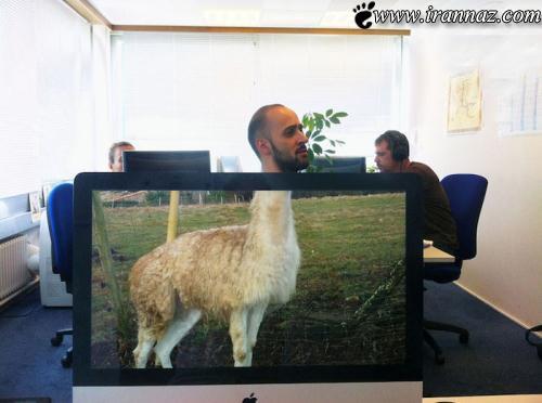 عکس هایی فوق العاده جالب از ترکیب انسان با حیوان
