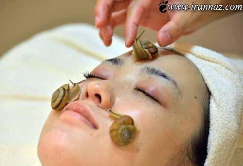 روشی جالب برای زیبایی پوست با حلزون زنده (تصاویر)