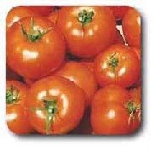 طرز تهیه گوجه فرنگی پرشده(هندی)