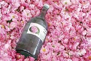 خواص مفید گلاب در سلامتی بدن