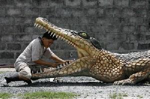 زنی تمساح را به همسرش ترجیح داد