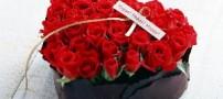 رازهایی از هدیه دادن گل