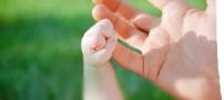 39 اصل شادی بخش در زندگی