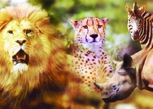 بزرگترین و جالب ترین باغ وحش آنلاین جهان