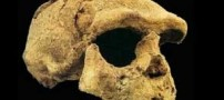 بقایای یک انسان مدرن با قدمت 110 هزار سال کشف شد!