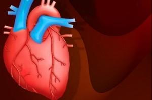 پیش بینی بیماری قلبی با اندازه دور کمر!!