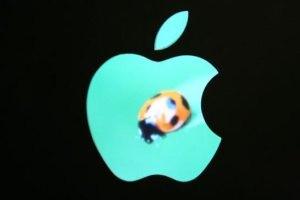 حقوق رئیس اپل یک دلار است!! (باور می کنید)