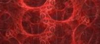 خوراکی مفید برای كاهش كلسترول خون