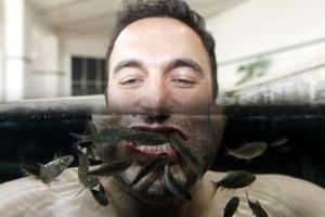 ماهیهایی که دکتر هستند و شما را درمان میکنند!!