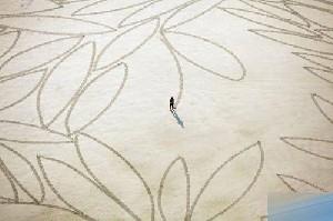 عکسهایی از خلق آثار هنری با شن کش