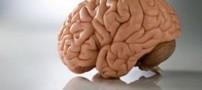 چگونه میتوانیم حافظه خود را  تقویت کنیم؟