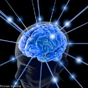 ساخت ریزتراشهای که با مغز حرف میزند