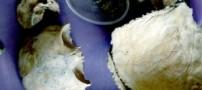 استخوانهای 50 كودك در مكزیك پیدا شد!
