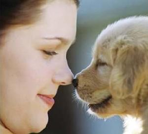 تشخیص سرطان ریه به کمک سگ !