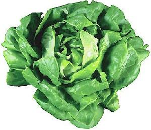 سبزیجات دارای برگ سبز دشمن دیابت