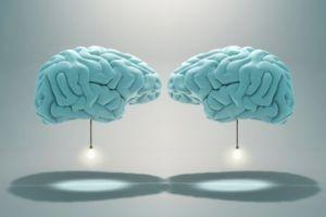 آیا می خواهید مغزتان پیر نشود!!