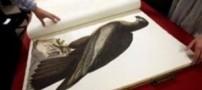 چوب حراج بر گران ترین كتاب جهان