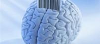 آیا دو زبانه بودن برای مغز ضرر دارد؟!