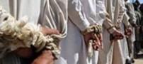 دستگیری چند عامل القاعده در فرودگاه مهرآباد