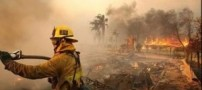 آتش سوزی در جنگل های شاهرود