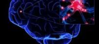 تأمین غذای مغز و درمان بیخوابی با خوردن این میوه