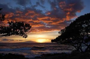 عکس هایی از زیباترین جزیره سال 2010 جهان