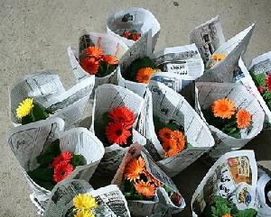 روانشناسی هدیه دادن انواع گلهای مختلف