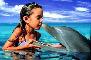 موفقیت دانشمندان در حرف زدن با دلفین ها