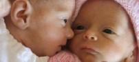 زنی افغان در پاکستان هفت قلو به دنیا آورد