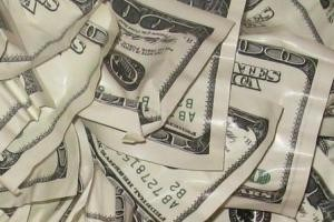 خورده شدن اسکناس های بانک توسط موریانه