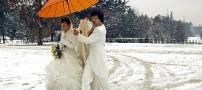 دسته گل جالبی که عروس و داماد به آب دادند