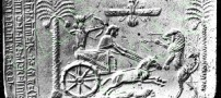 کشف بقایای اسب خزر بر دیوار پرسپولیس