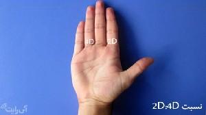 رابطه جذابیت آقایان با طول انگشتان دست
