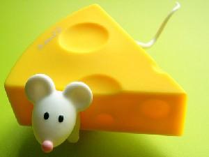 مصرف زیاد پنیر بسیار خطرناک است 1!