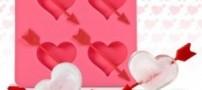 هیجان انگیز ترین ماه عسل یک عروس و داماد