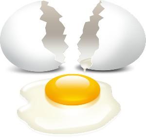 شرایط مناسب برای نگهداری تخم مرغ