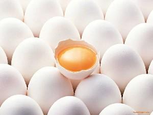تخم مرغ را کاملآ بپزید