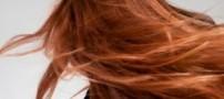 با رعایت این سه نکته موهایی زیباداشته باشید